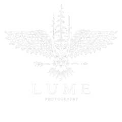 Lume Photography: Michigan Wedding Photographer