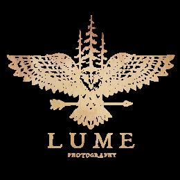 Michigan Wedding Photographer | Lume Photography
