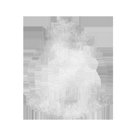 Lume Photography logo